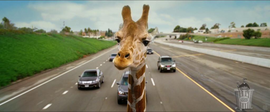 Ninguna jirafa fue lastimada durante la filmación de esta película.
