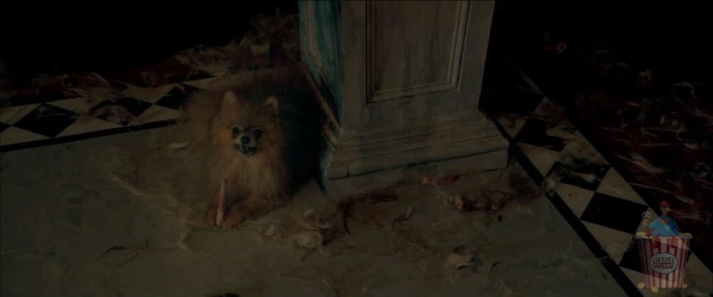 ¿En serio? ¿Un perro canibal está supuesto a ser gracioso? ¡NO LO ES!